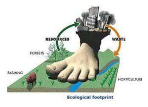 Neked mennyi a karbon lábnyomod? - ClimeNews